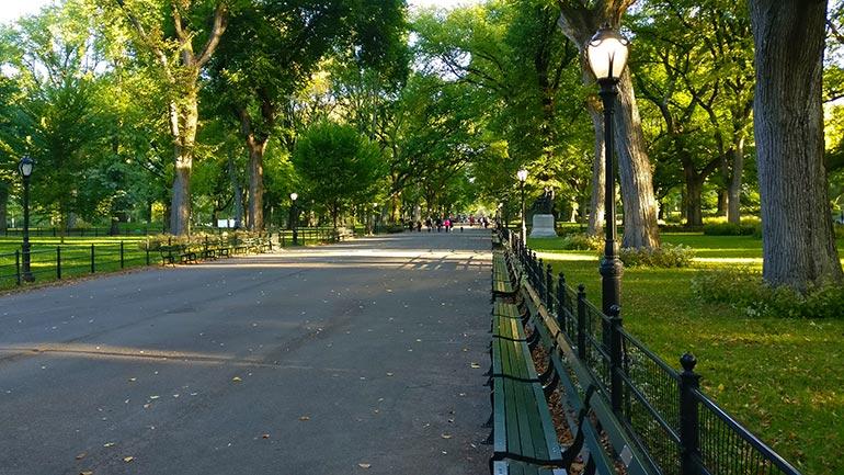 Gedraag je in het park als een local met een kop koffie en een goed boek